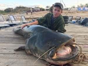Известный астраханский рыбак поймал сома длиной 2,5 метра