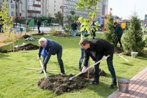 Чиновники озеленили Петровскую набережную