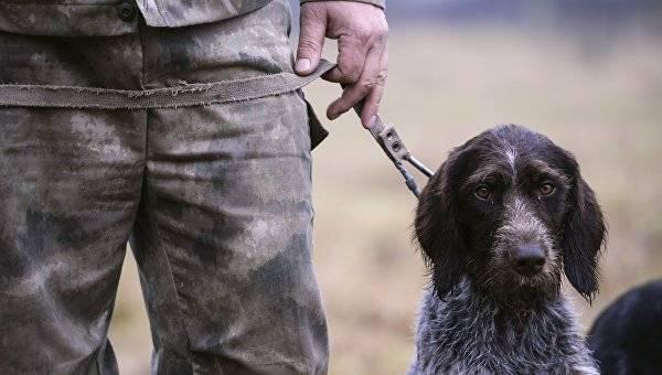 В Астраханской области охотники перестреляли фазанов