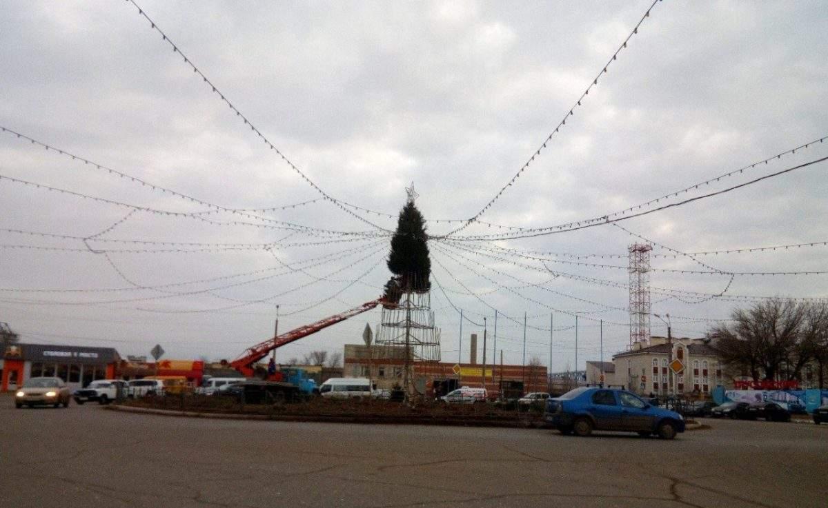 На астраханских улицах появились первые елки