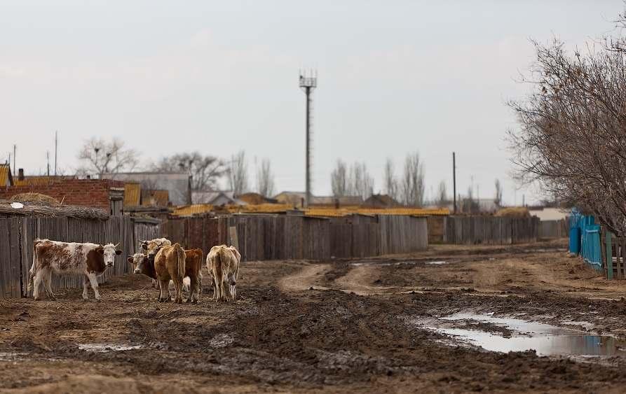 Муниципалитеты Астраханской области хотят стимулировать на развитие