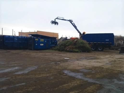 Астраханские отслужившие новогодние елки используют для благоустройства