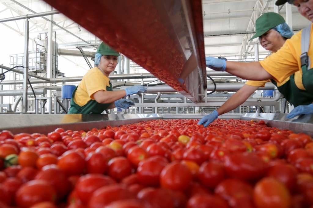Астраханская область хочет «отхватить» половину рынка томат-пасты России