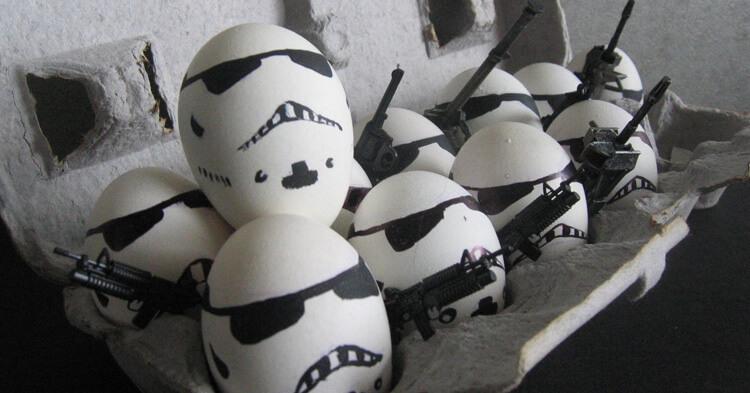 Астраханская область прославилась своими яйцами