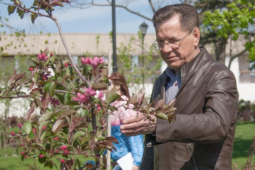 Александр Жилкин рассказал о личном контроле за цветами в Астрахани