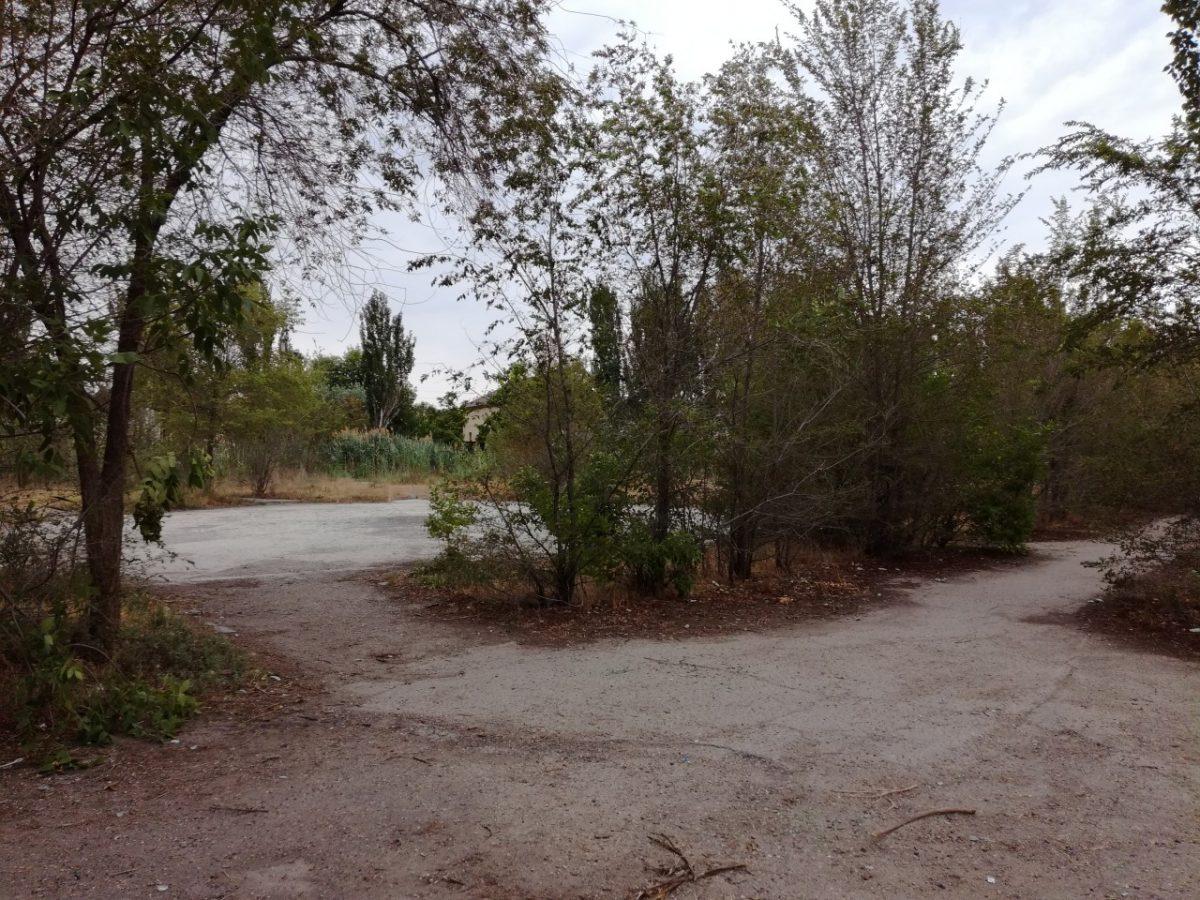 Возле улицы Яблочкова приводят в порядок заброшенный парк