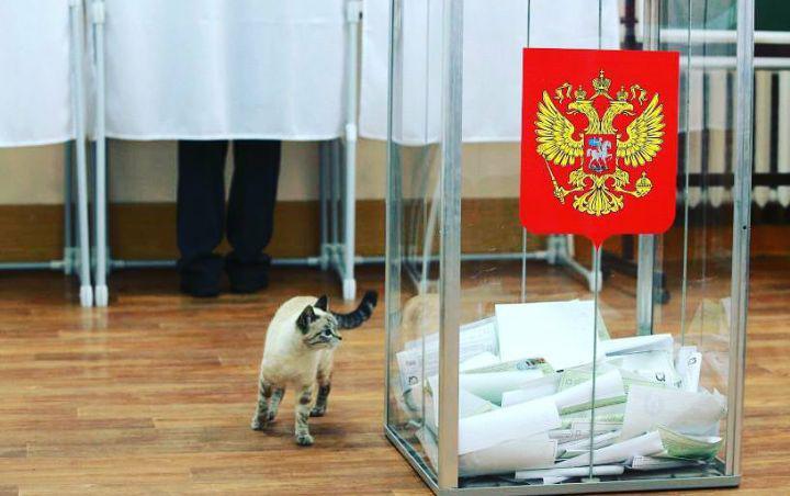 Довыборы в Облдуму обойдутся астраханскому бюджету почти в 2 млн рублей