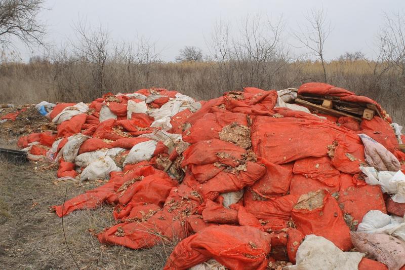 Астраханская область на первом месте экологического рейтинга