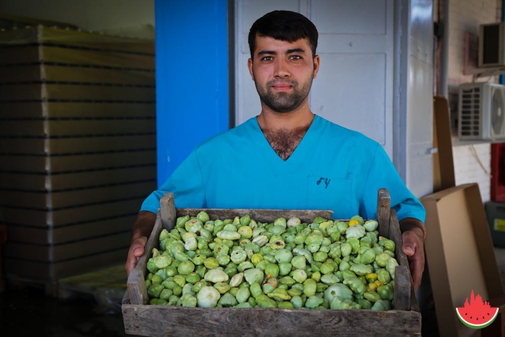 Как делают любимые многими овощные консервы в Астраханской области