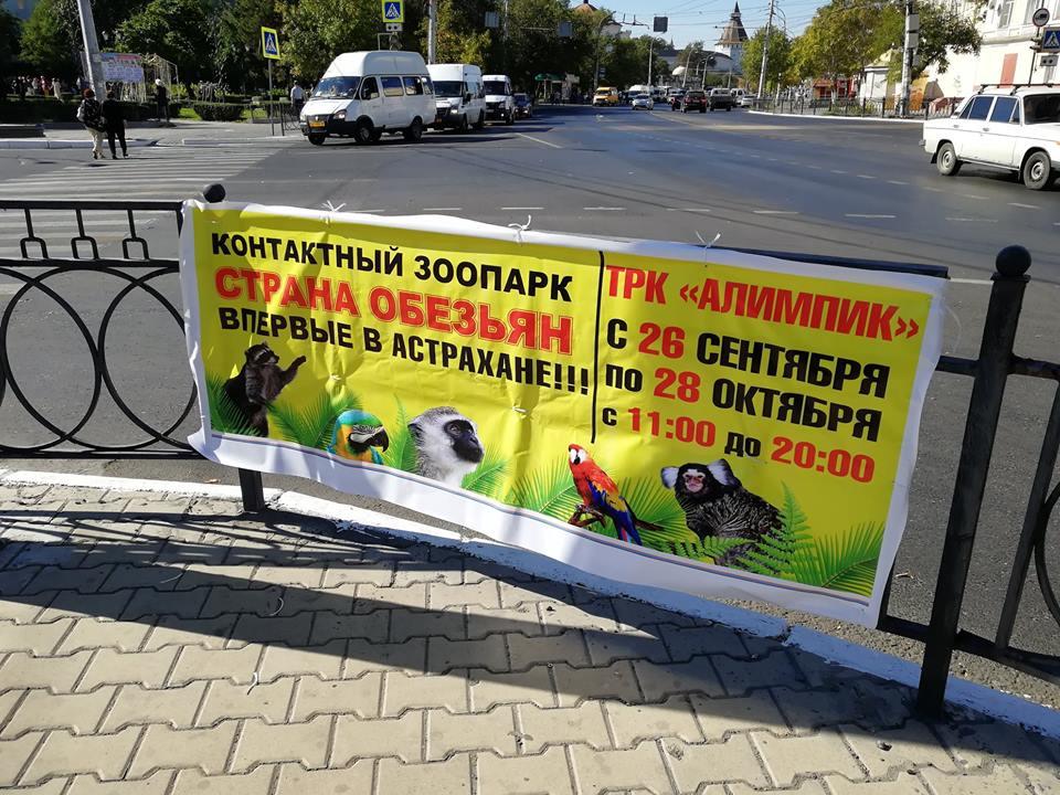 Фото дня: «Впервые в Астрахане»