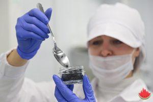 Как в Астрахани производят черную икру