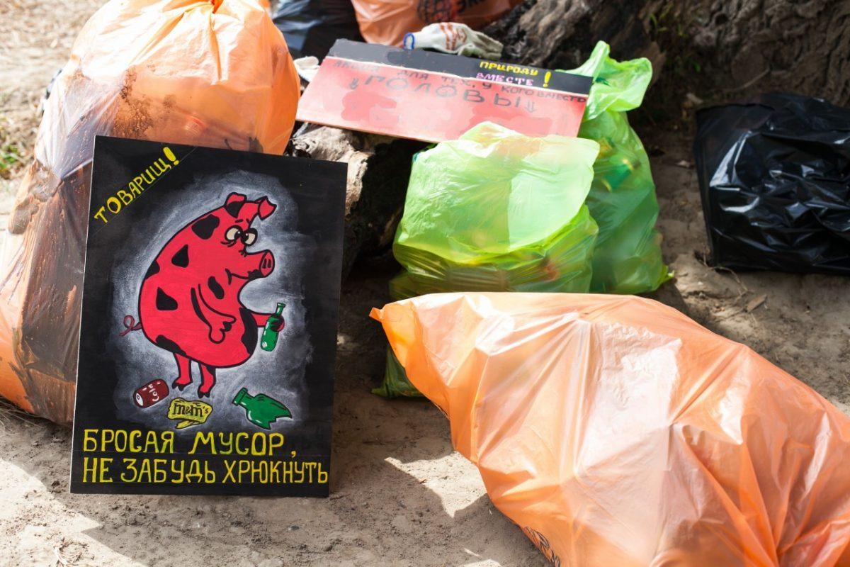 Две трети собранного на субботниках мусора направят на переработку