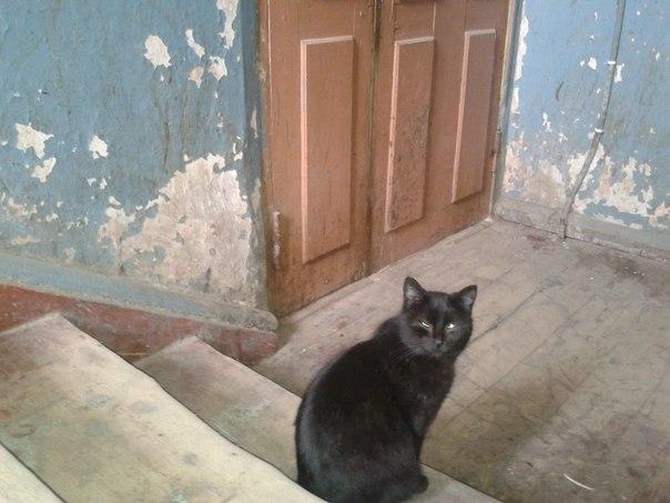 Астраханьстат изучит условия жизни населения в Астраханской области