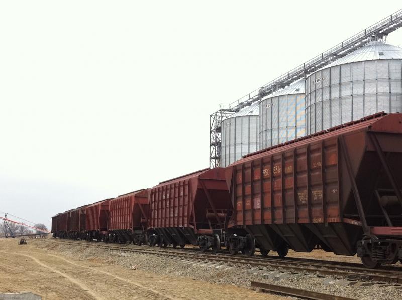 Перевозки муки и зерна в Астраханском регионе превысили прошлогодний уровень