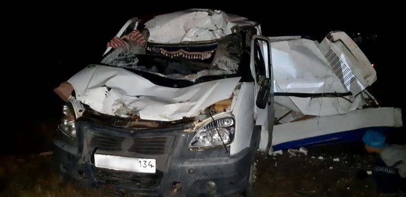Верблюд вновь стал причиной серьезной аварии в Астраханской области