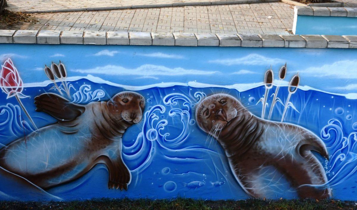 На Красной Набережной появились довольные тюлени