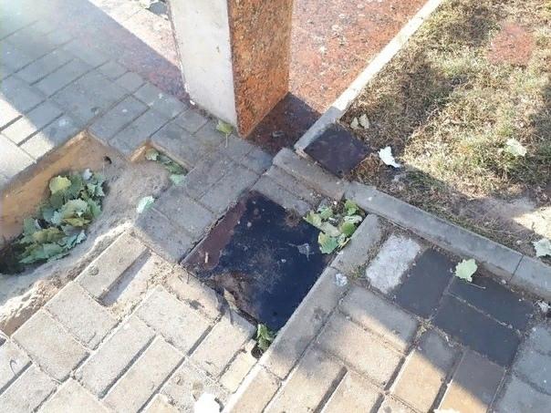 Астраханские полицейские нашли вандалов с Лебединого озера