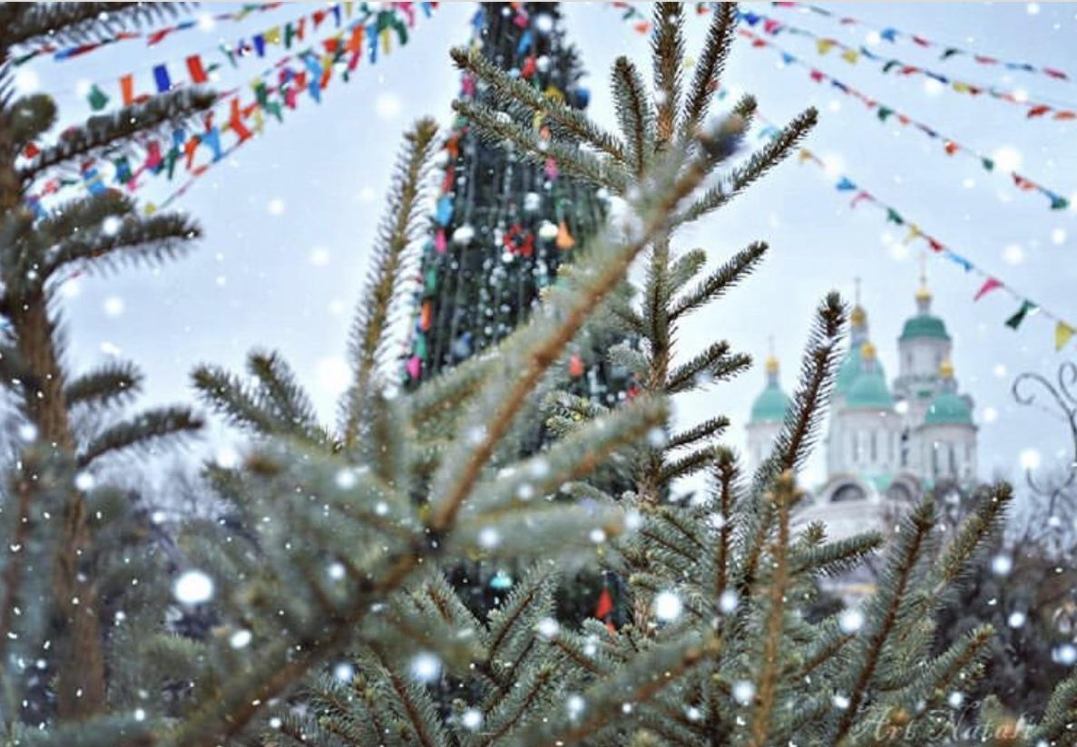 Сегодня в Астрахани торжественно откроют главную городскую елку