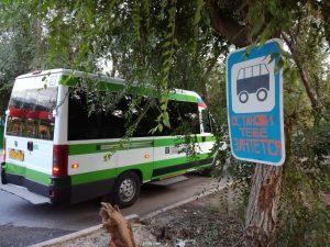Чиновники посоветовали оставшимся без транспорта жителям Оранжерей провести соцопрос