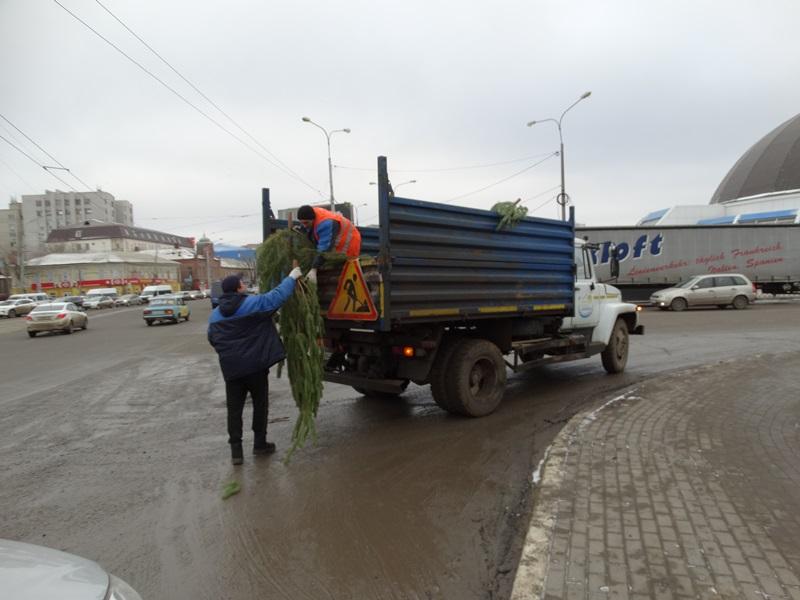 Астраханская полиция изымает ёлки у торговцев