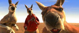 Субботнее видео: кенгуру живет дома у астраханского директора зоопарка