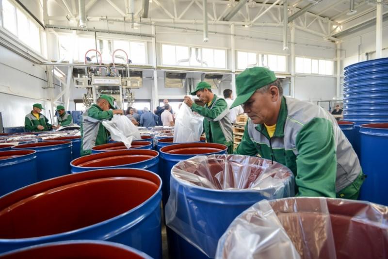 Туристов в Астраханскую область будут привлекать с помощью завода томат-пасты