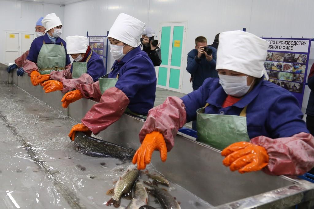 Росрыболовство: астраханские рыбаки стали более законопослушными