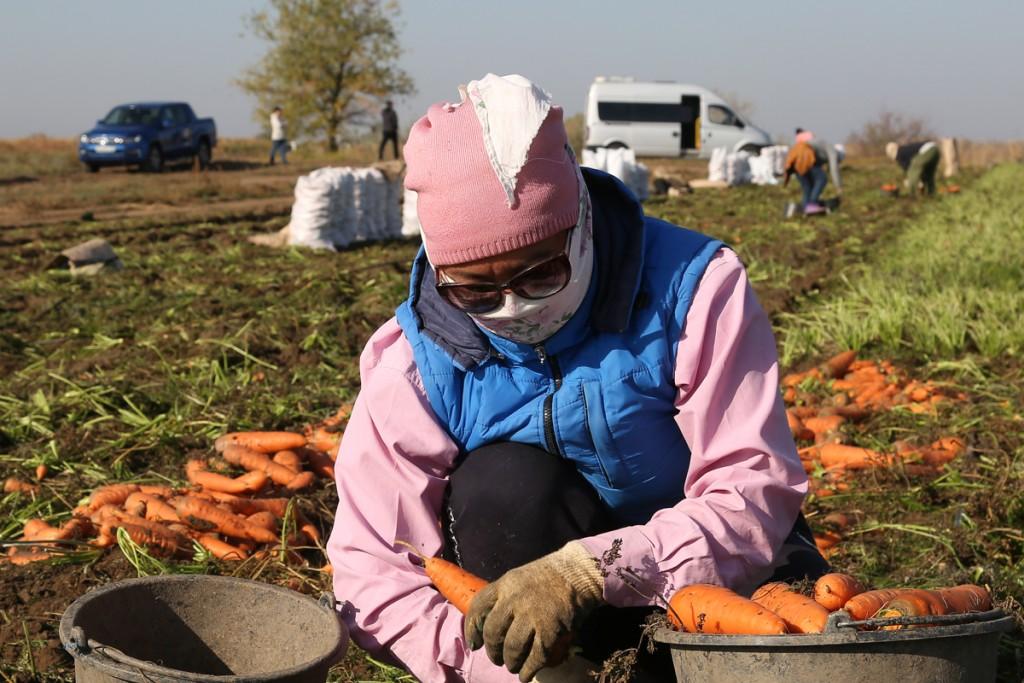 В аграрные проекты Астраханской области вложат 30 млрд рублей