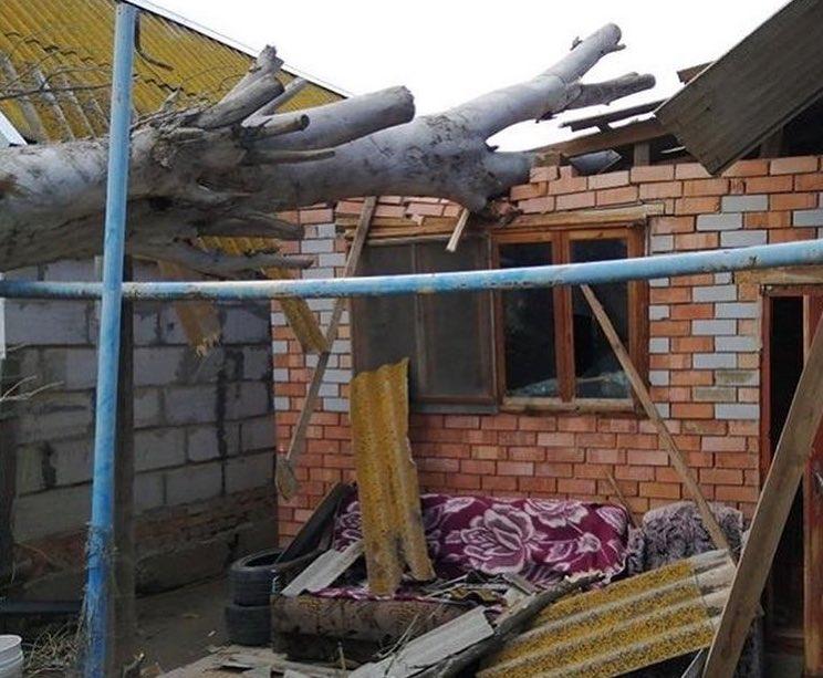 В Астраханской области тополь пробил крышу дома