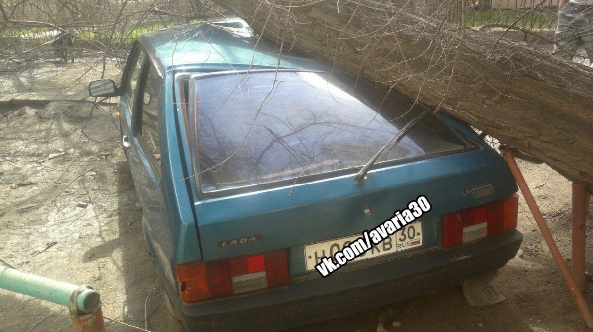 В Астрахани на машину упало дерево