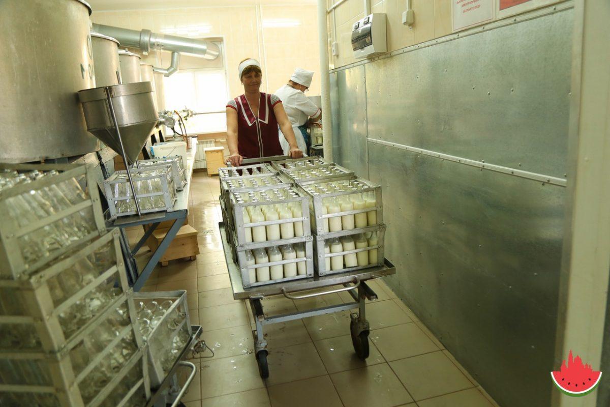 Астраханская область увеличит производство молочной продукции в пять раз