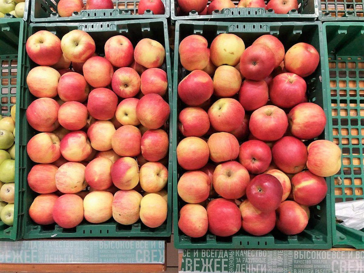 Под Астраханью уничтожено полтонны санкционных яблок