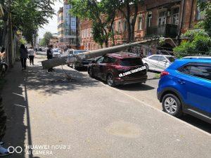 Олег Шеин обратился в прокуратуру по поводу упавших столбов