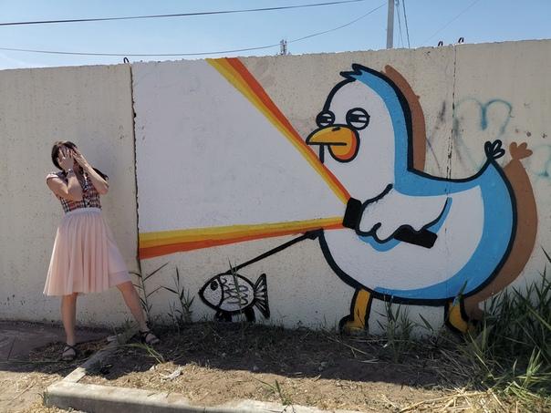 Птичка по имени Жора продолжает украшать астраханские заборы