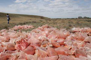 Обнаружено поле с пакетами томатной пасты в Астраханской области