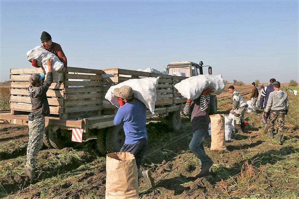Ахтубинские фермеры рассказали Морозову о проблемах с трудовыми мигрантами