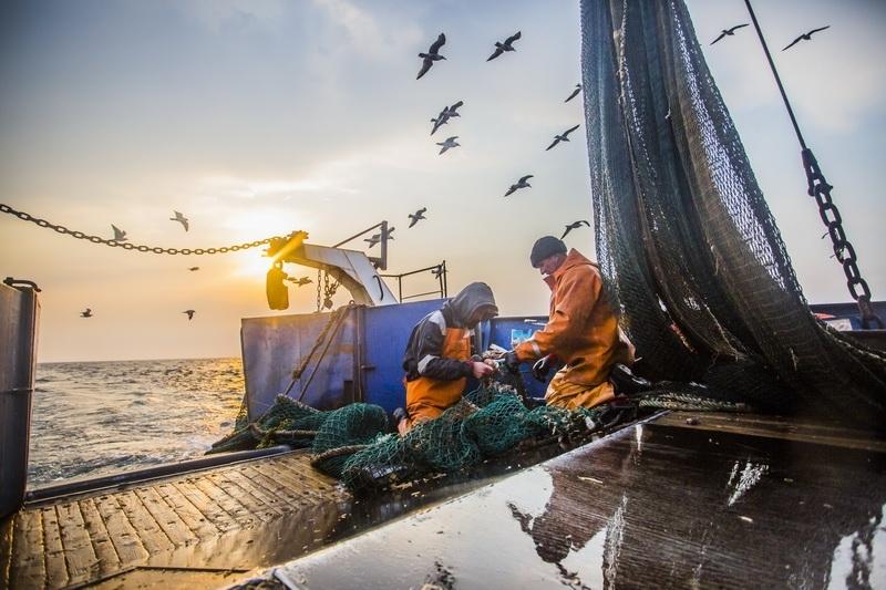 Астраханская область поможет возродить рыболовный флот России