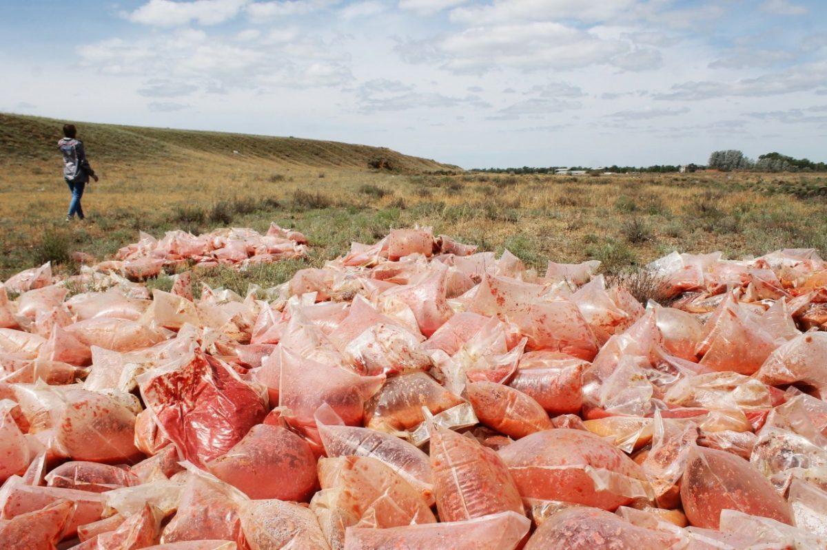 Свалку томатной пасты под Астраханью ликвидировали