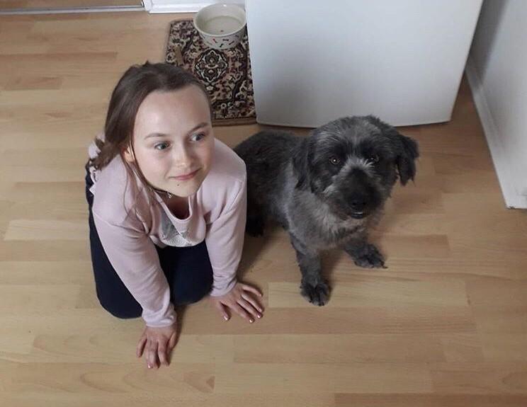 Астраханский бездомный пес переехал в Германию. Смотрите, как он счастлив