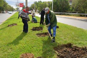 Астраханский предприниматель оплатит газон в сквере Чернобыльцев