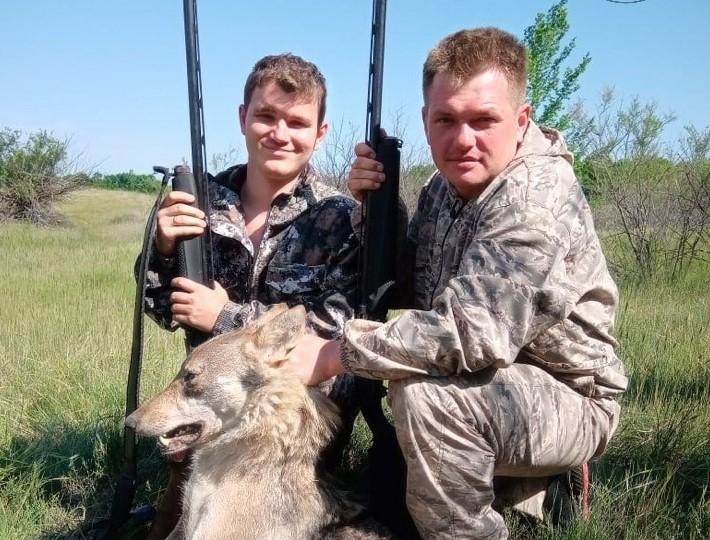 Астраханские охотники долго охотились за волком по просьбе местных жителей