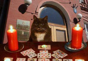Соцсети: в увольнении Сергея Морозова замешана магия