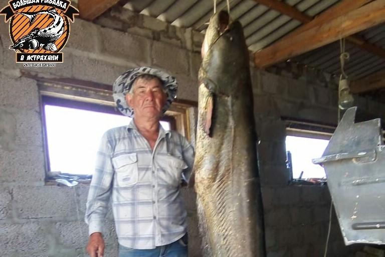 Дядя Раис поймал сома выше себя в Астраханской области