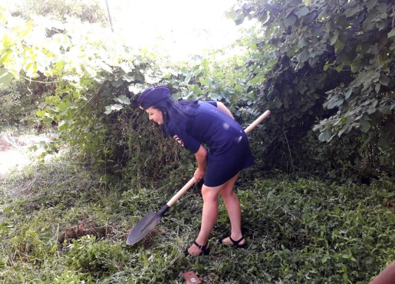 В Астрахани выкосили гектар конопли и заставили дачников от нее избавиться