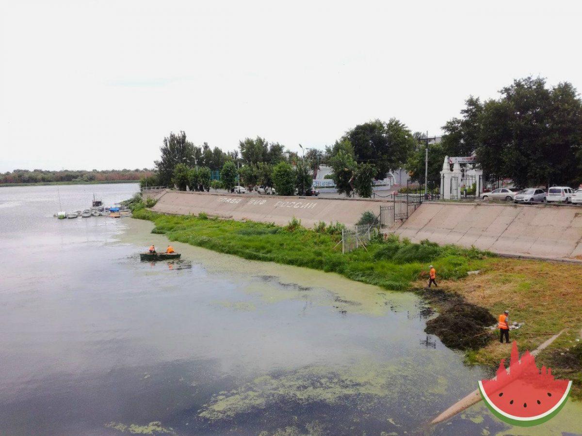 В Астрахани очищают берега на стрелке возле ЗАГСа