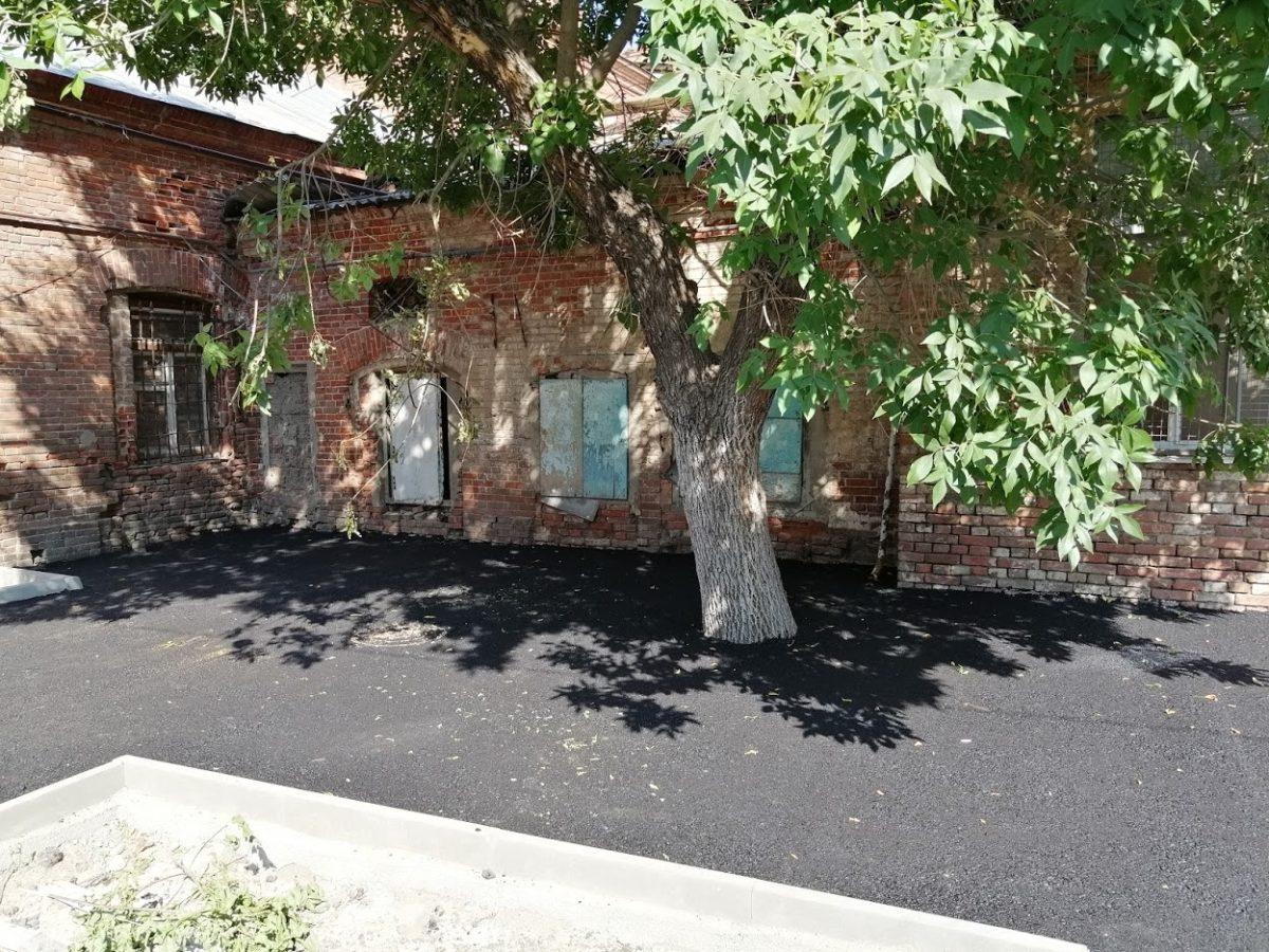 В центре Астрахани дерево закатали в асфальт