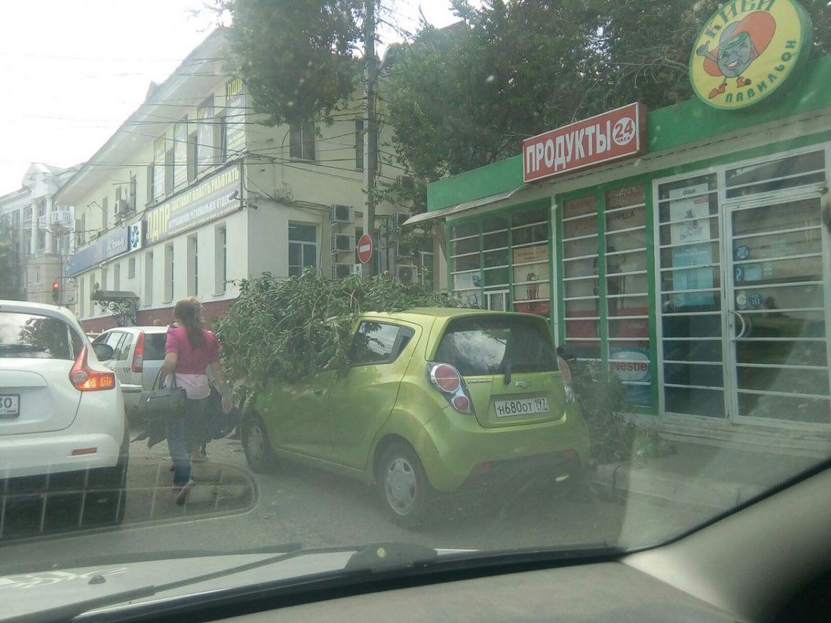 Ветер «опилил» деревья на машины астраханцев