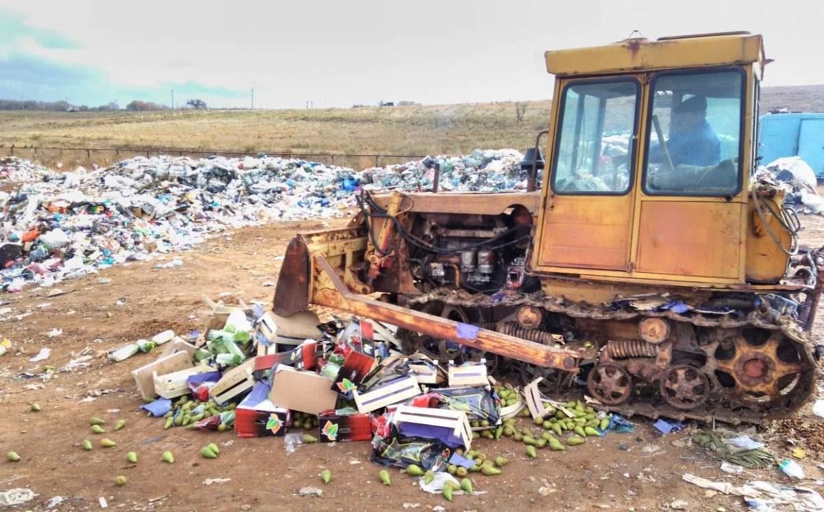 Россия продолжит уничтожать санкционные продукты