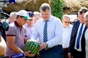 Игорь Бабушкин: «У нас родятся арбузы белые, желтые, разных вкусов»