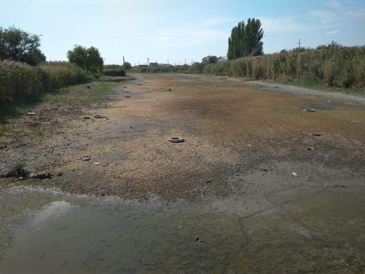 Жители села Солянка сфотографировали умирающий ерик